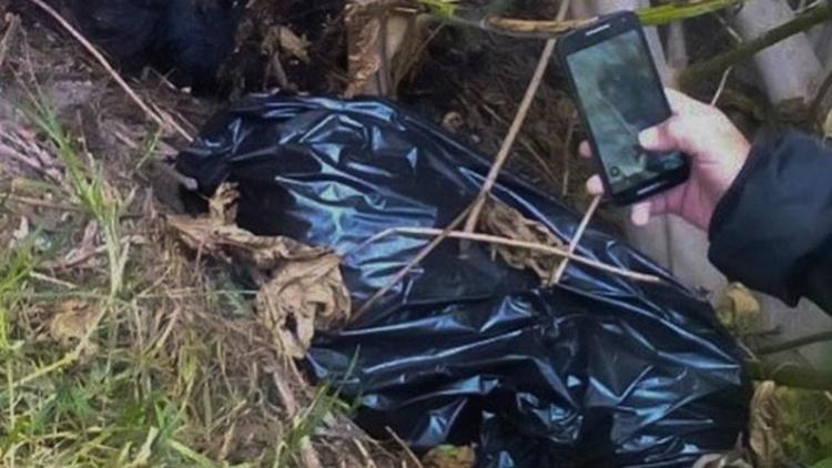 Ejecutados en bolsas de Plástico