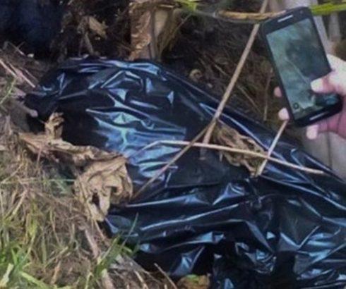 Encuentran en siete bolsas restos descuartizados de personas
